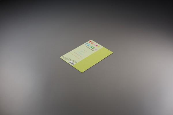 종이문화 뉴씨플레인 A5 120g(10매)7.배추색